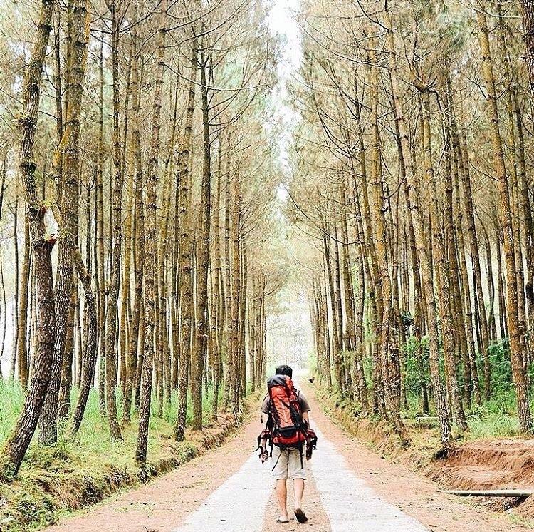 Jangan Ngaku Traveler Sejati Datangi 10 Tempat Wisata Magelang Punthuk