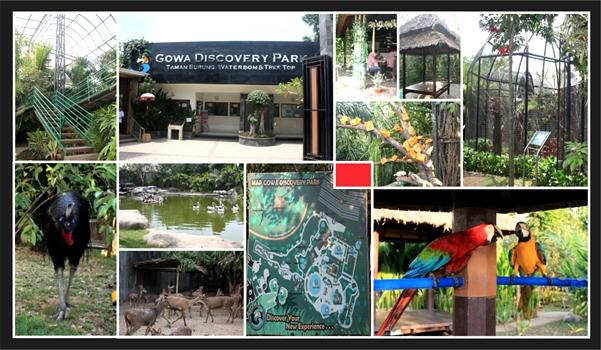 Bbksda Sulawesi Selatan Bersinergi Gowa Discovery Park Tangani Satwa Sitaan