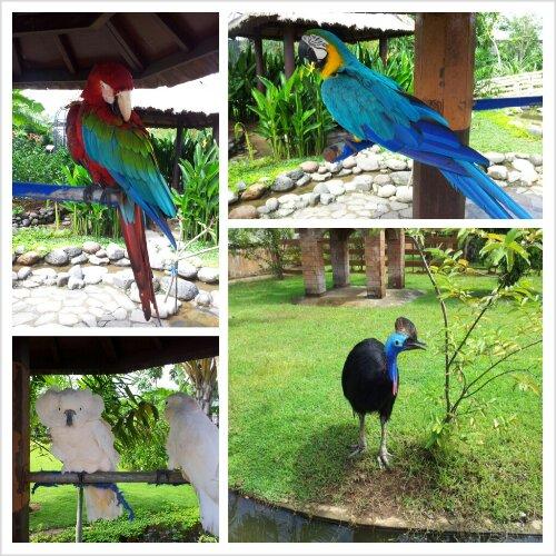 Gowa Discovery Park Kabar Image Kota Makassar