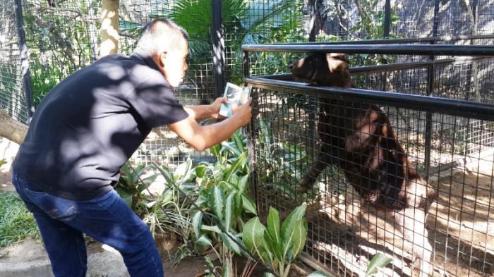 Gowa Discovery Park Makassar Waterboom Taman Burung Pengunjung Memotret Seekor