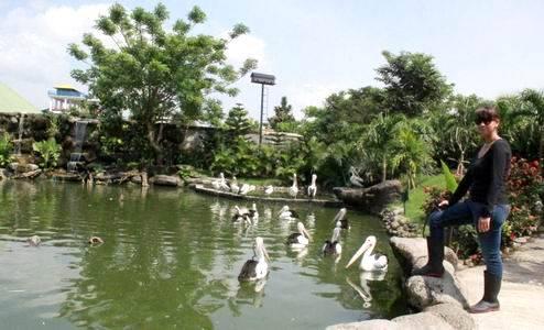 Yuk Berlibur Taman Satwa Waterbom Gowa Discovery Park Kota Makassar
