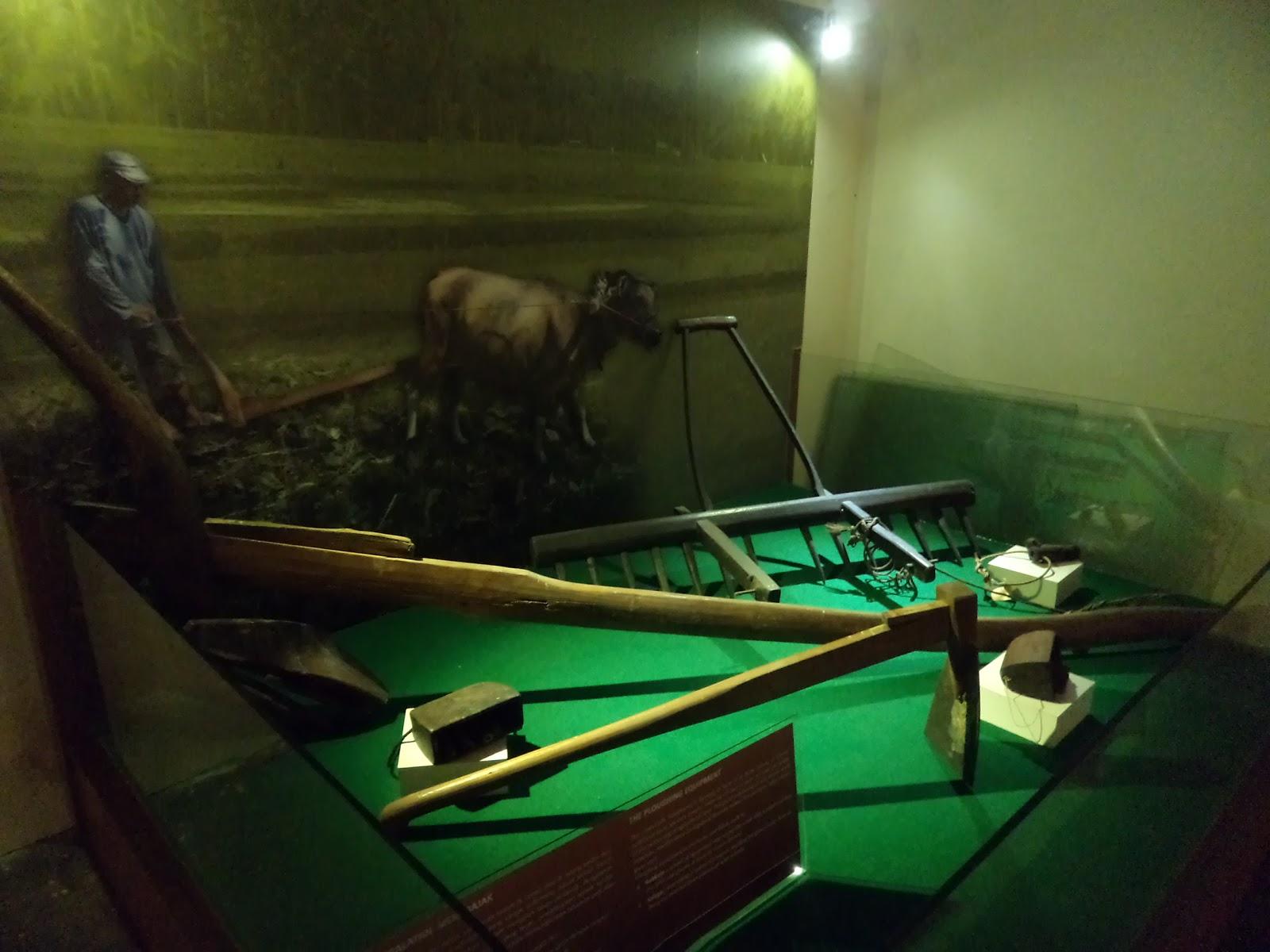 Koleksi Alat Pertanian Museum La Galigo Wisata Kerja Indonesia Bajak