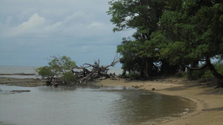 Pantai Kuri Terjamah Oleh Fachrul Khairuddin Kompasiana Caddi Kota Makassar