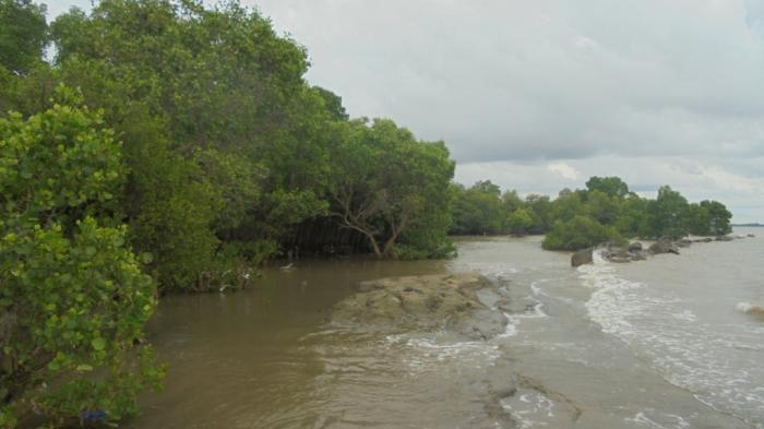 Pantai Kuri Terjamah Oleh Fachrul Khairuddin Kompasiana Kampung Caddi Pohon