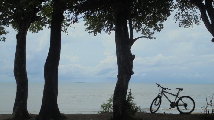 Pantai Kuri Terjamah Oleh Fachrul Khairuddin Kompasiana Pohon Bisa Pasang