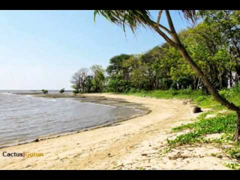 Pantai Kuri Youtube Caddi Kota Makassar