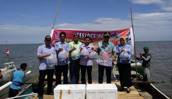 Restocking Rajungan Pemdes Nisombalia Maros Lepas 125 Ribu Bibit Kuri