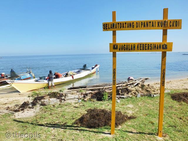 Tulisan Gambar Foto Menjemur Rumput Laut Kuri Caddi Diusahakan Oleh