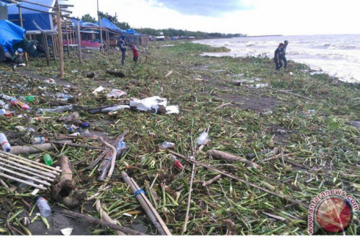 Pantai Tanjung Bayang Makassar Dipenuhi Enceng Gondok Antara News Sekitarnya