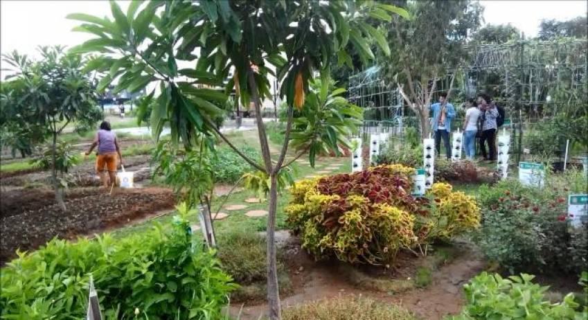 Net Televisi Taman Maccini Sombala Kota Makassar
