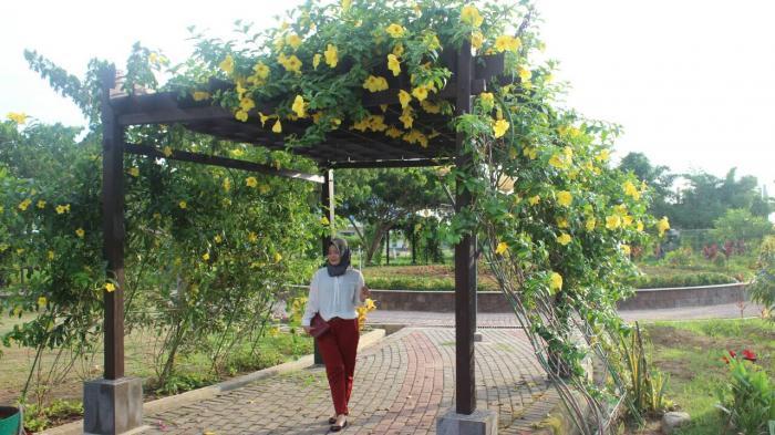 Taman Maccini Sombala Tempat Alternatif Warga Makassar Habiskan Kota