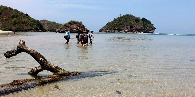 Bertualang Pantai Selatan Malang Kompas Gatra Clungup Dua Kawasan Konservasi