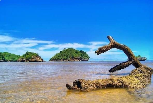 Hamparan Indah Pasir Putih Pantai Clungup Malang Alamat Kota