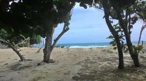 Mengejar Pantai Clungup Jalan Menuju Oleh Arsyad 14211155121787842620 Kota Malang