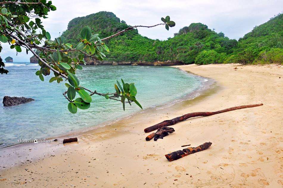 Pantai Clungup Malang Donziescobie Dsc 0879 Copyz Kota