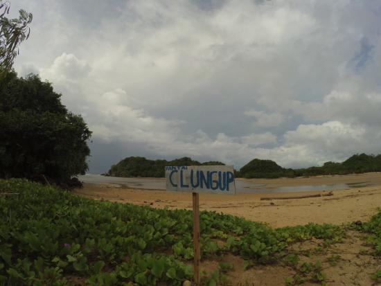 Pantai Clungup Picture Beach Malang Tripadvisor Kota