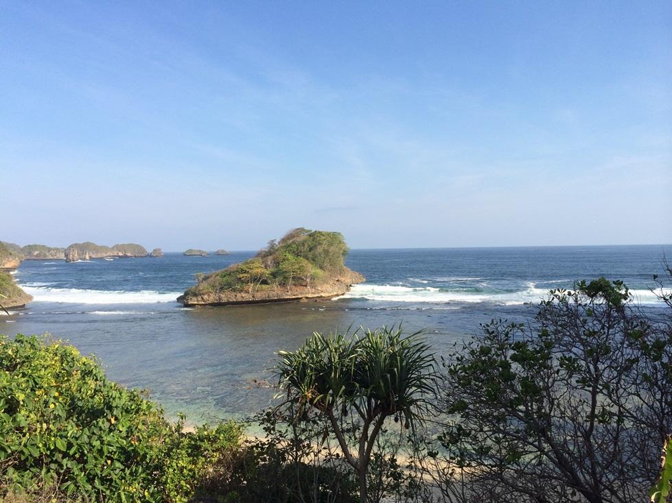 Pesona Mangrove Terumbu Karang Snorkling Pantai Clungup Kota Malang