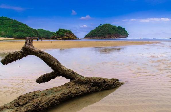 Tiket Masuk Rute Jalan Menuju Pantai Clungup Malang Selatan Mempesona