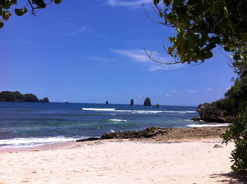 Trip Random Clungup Bonus Snorkling Pulau 3 Warna Seputar Pantai