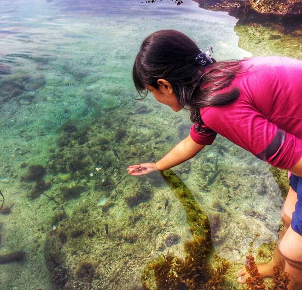 Pantai Kedung Celeng Malang Tersembunyi Terkuak Kota
