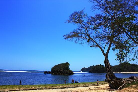 Berlibur Pantai Kondang Merak Ngalam Create Site Kota Malang