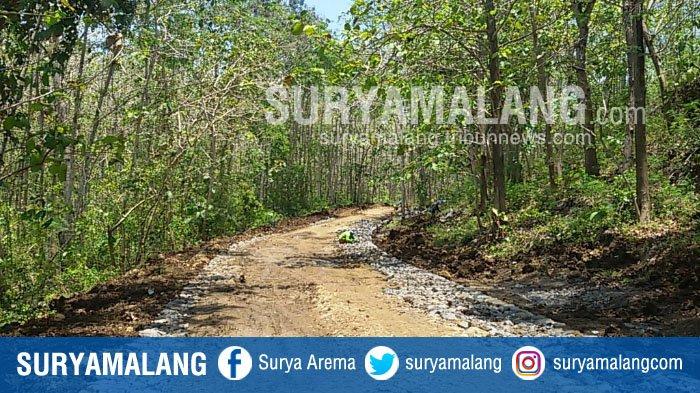 Jalan Nantinya Bisa Menghubungkan Pantai Selatan Malang Bromo Tengger Semeru