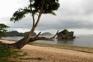 Pantai Kondang Merak Malang Guidance Kota