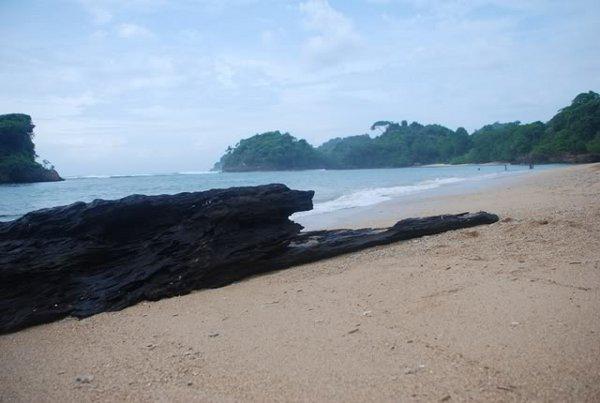 Pantai Kondang Merak Malang Keindahan Kota