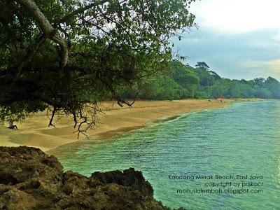Pantai Kondang Merak Panorama Mempesona Manusia Lembah Garis Kota Malang