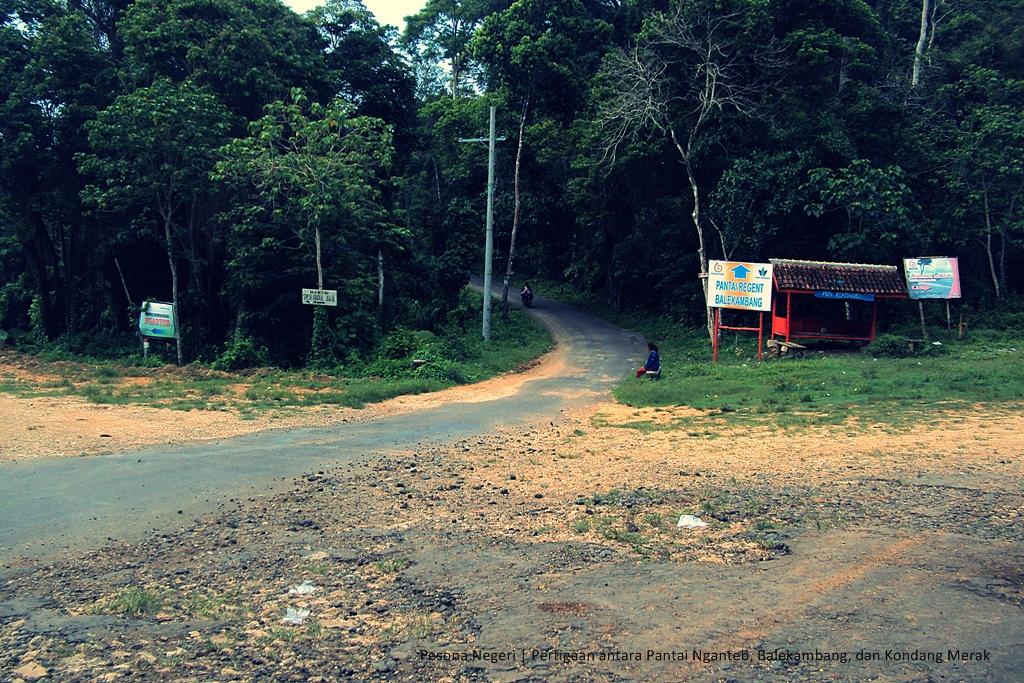 Pesona Malang Menikmati Pantai Alami Kondang Merak Negeri Pertigaan 3