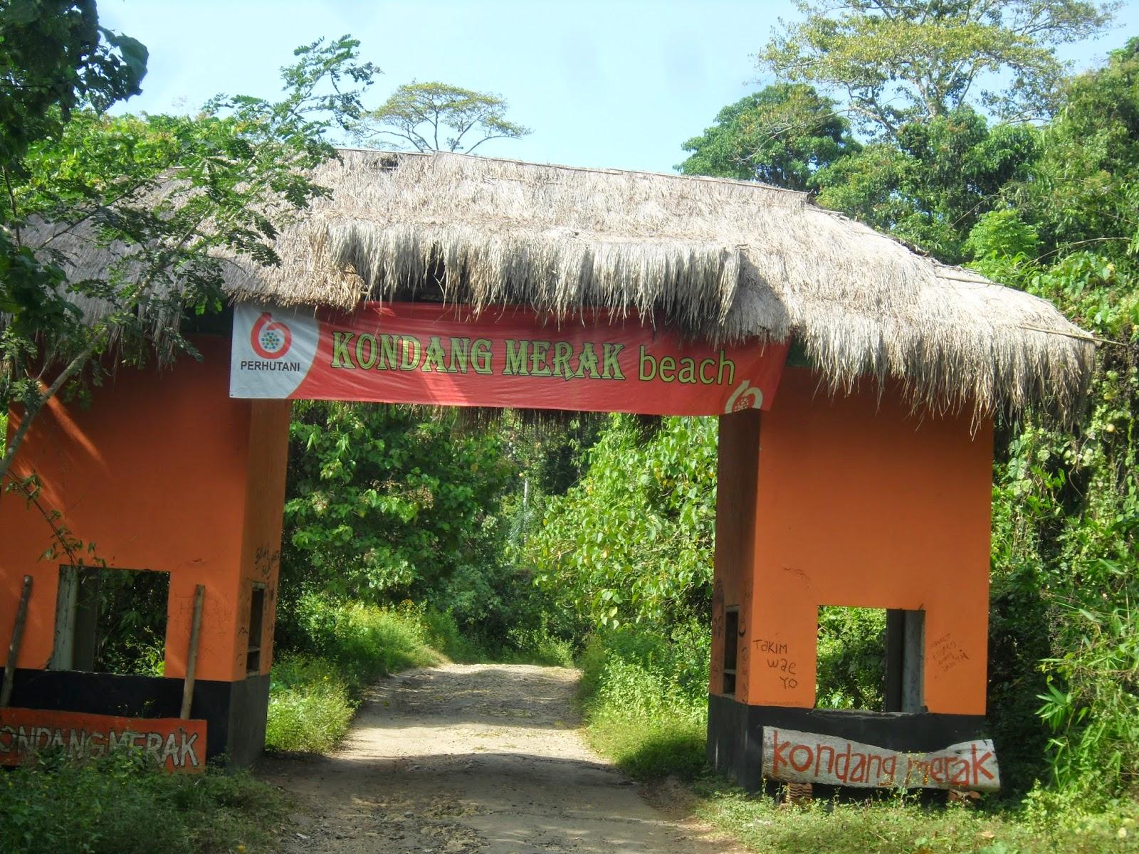 Seratusnegara Pantai Kondang Merak Nggak Perlu Biaya Mahal Sendiri Berada