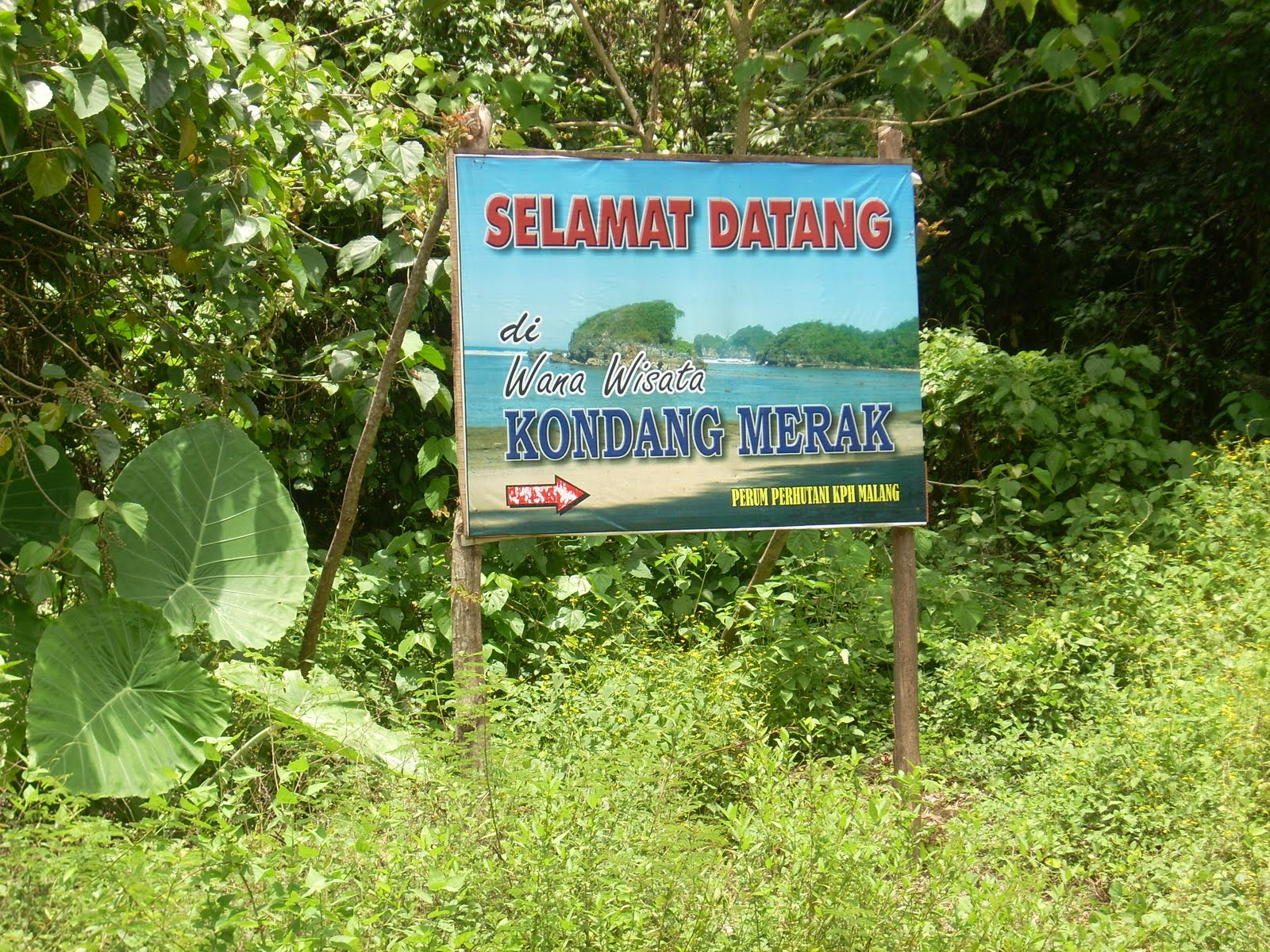 Traveling Cantiknya Pantai Kondang Merak Icon Wisata Malang Kota