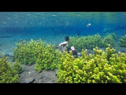 Explore Wisata Sumber Sirah Malang Jawa Timur Youtube Kota