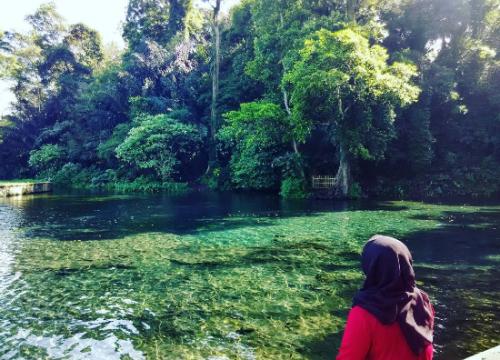 Mata Air Sumber Sirah Surga Bawah Malang Jawa Timur Wisata