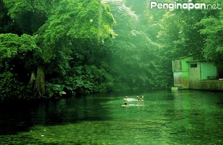 Sumber Sirah Lokasi Foto Bawah Air Terbaik Kabupaten Malang Kota