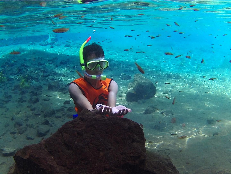 Sumber Sirah Malang Aquarium Besar Gondanglegi Langkah Kecilku Kota