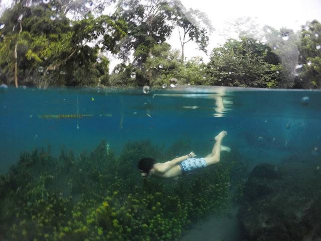 Sumber Sirah Spot Snorkeling Air Tawar Seru Malang Foto Kota