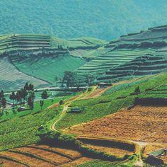 Tag Friends Lokasi Livefolkindonesia Instagram Desa Sumberbrantas Kota Wisata Batu