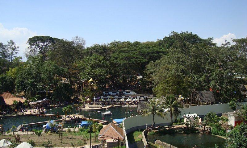 Daya Tarik Kera Objek Taman Wisata Wendit Air Kota Malang