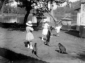 Taman Wisata Wendit Wikivisually Anak Eropa Bermain Kera 1907 1931