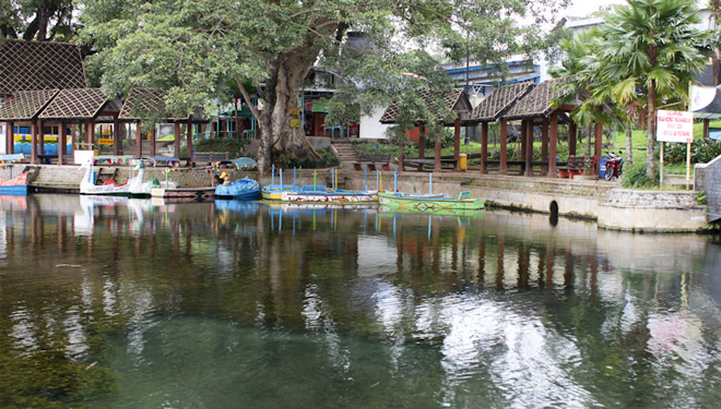 Wendit Sumber Air Suci Dewa Times Indonesia Kolam Wisata Wendi