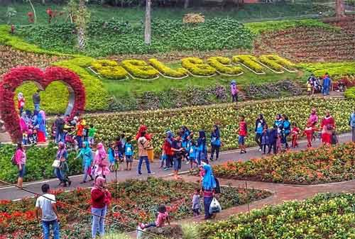 60 Tempat Wisata Malang Kamu Datangi Kota Apel Taman Selecta