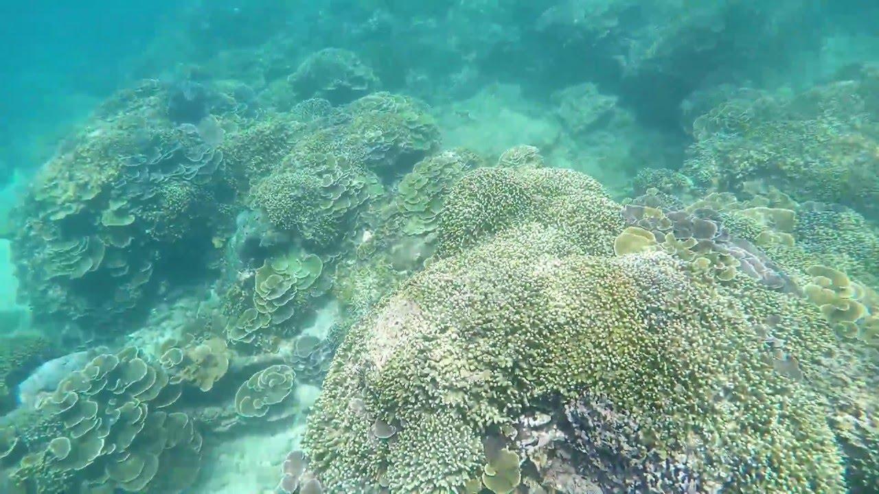 Goproid Touring Teluk Kletekan Pantai Bolu Banyu Anjlok Lenggoksono Youtube