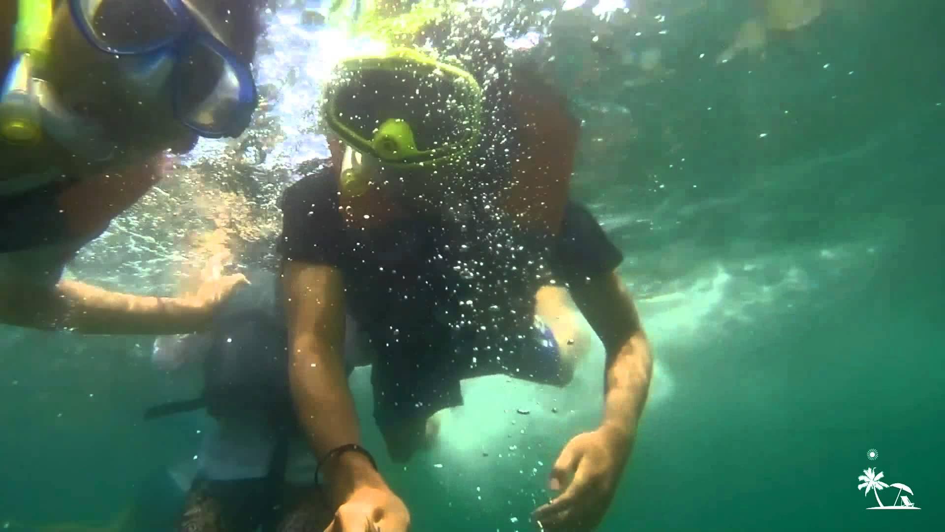 Lenggoksono Bolu Banyu Anjlok Snorkeling Malang Youtube Teluk Kletekan Kota