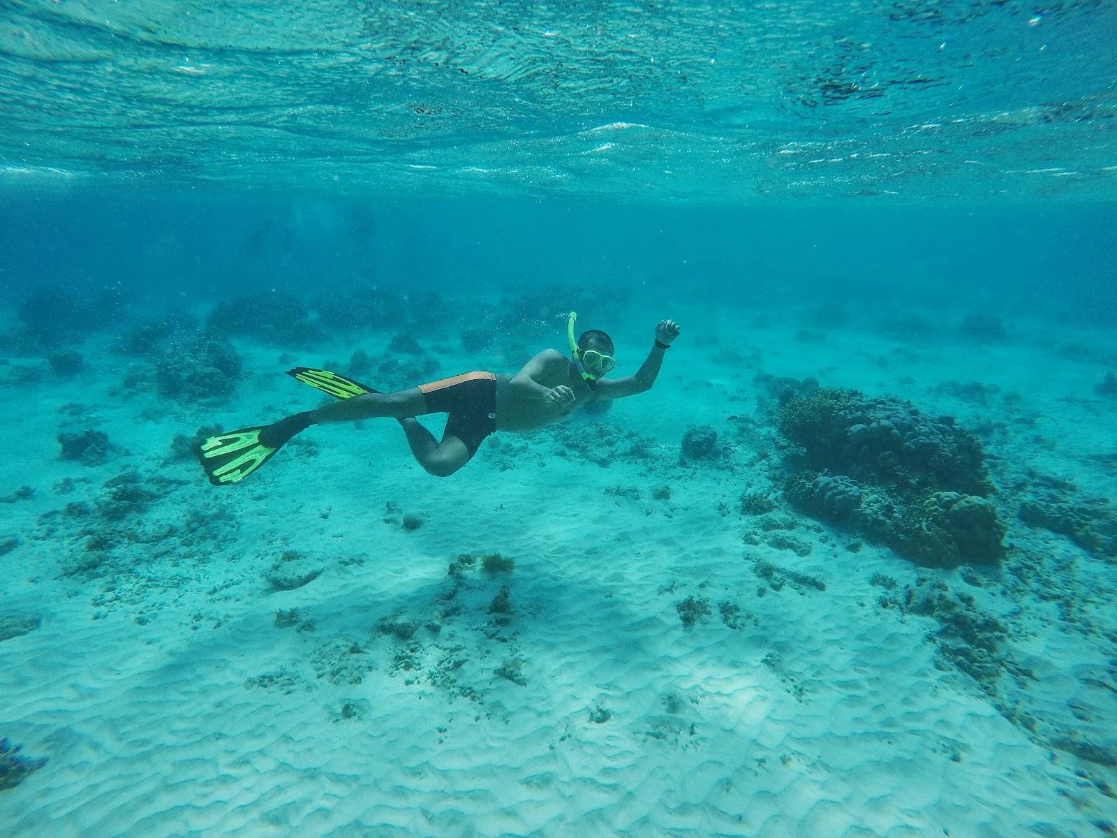 Macam Tentang Galihleo June 2015 Setelah Cukup Puas Snorkeling Pulau
