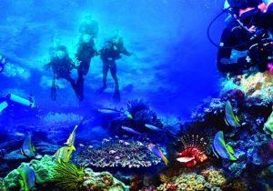 Daftar Objek Tempat Wisata Terindah Manado Provinsi Sulawesi Utara Bunaken