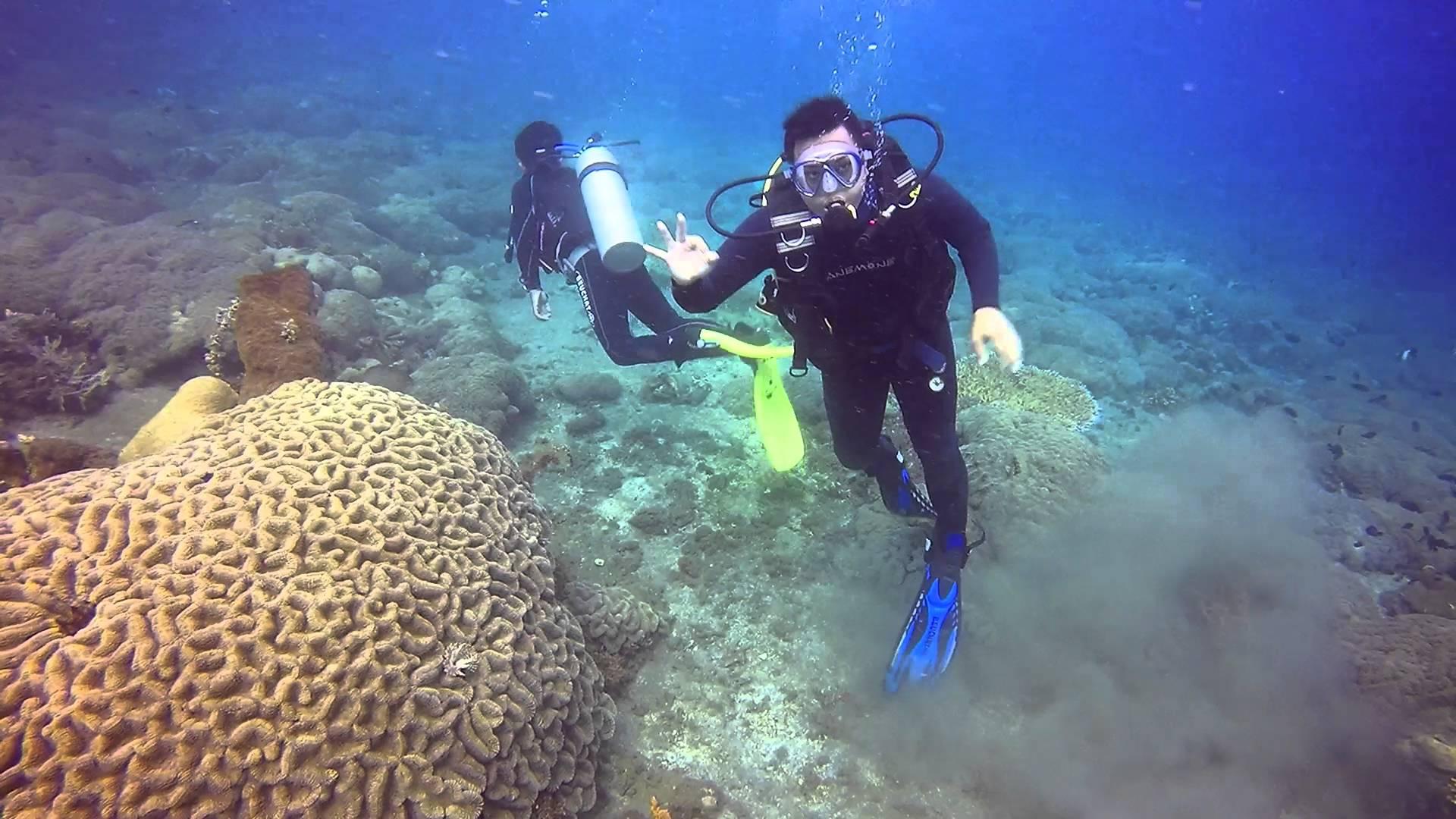 Intro Diving Pantai Malalayang Manado North Sulawesi Youtube Kota