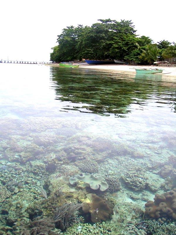 Taman Laut Siladen Kota Manado Nyaman Damai Terumbu Karang Pulau