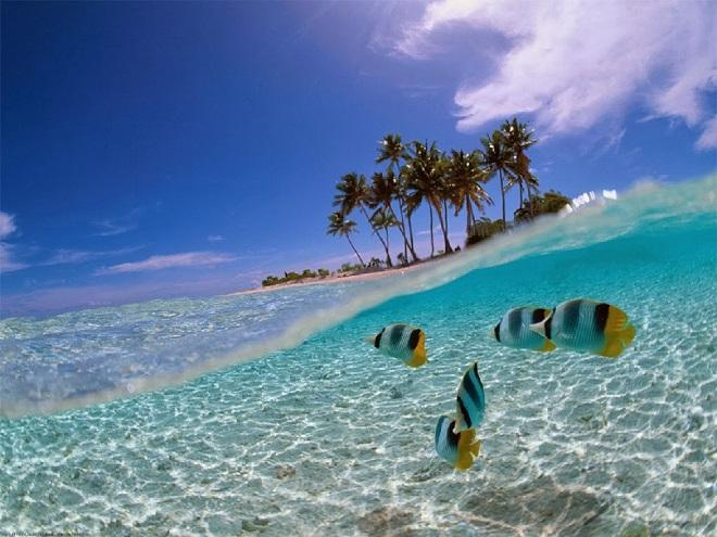 Ayo Taman Laut Bunaken Salah Satu Terindah Dunia Kota Manado