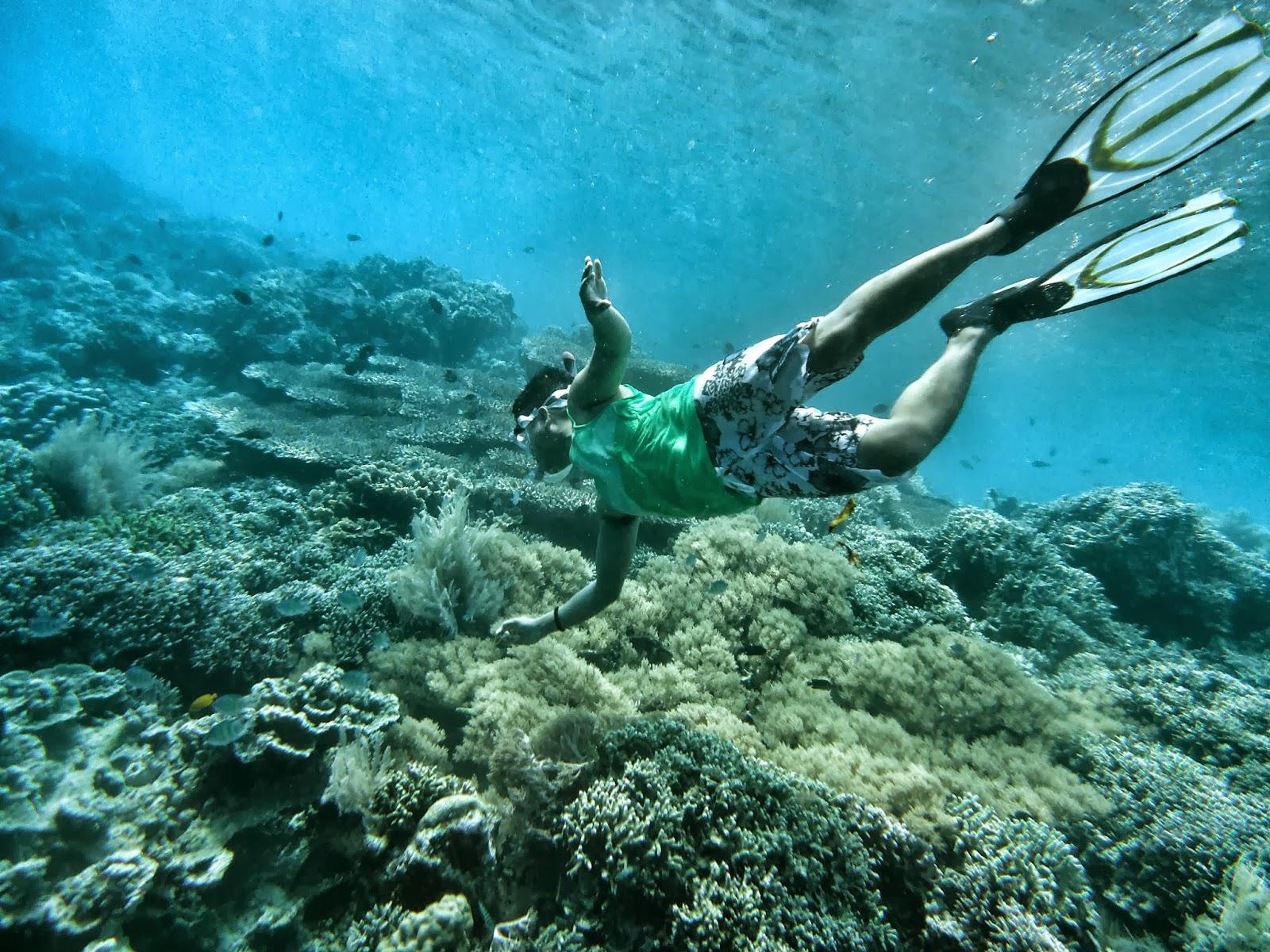 Diving Taman Laut Bunaken Wisata Manado Tempat Kota